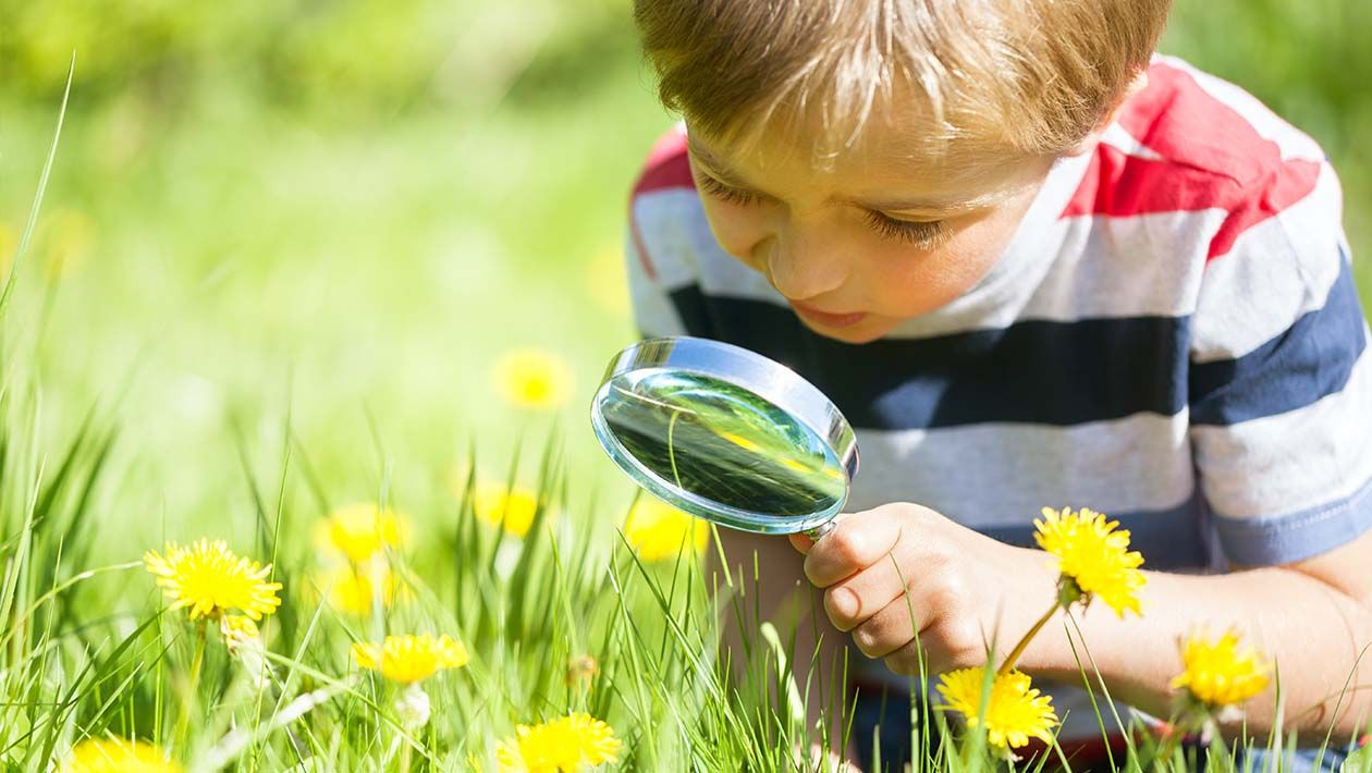 Boy in field looking at grass and flowers through a magnifying glass